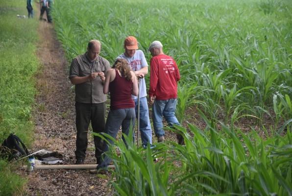 Students observe soil from a corn field